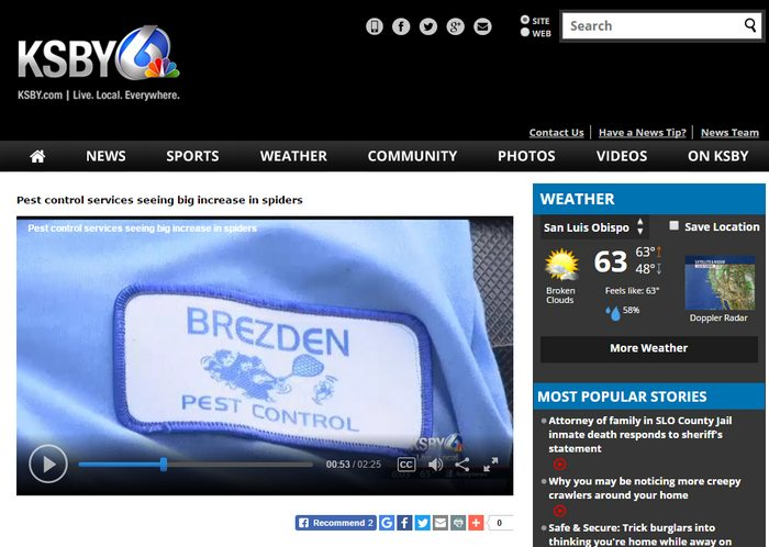 Brezden Pest Warns Of Increase In Spiders On KSBY-TV