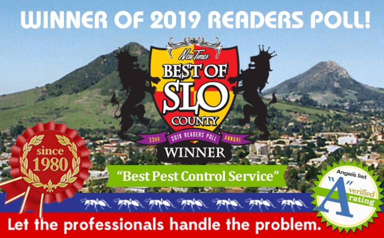 """Brezden Pest Wins 1st Place """"Best Of SLO County 2019"""""""