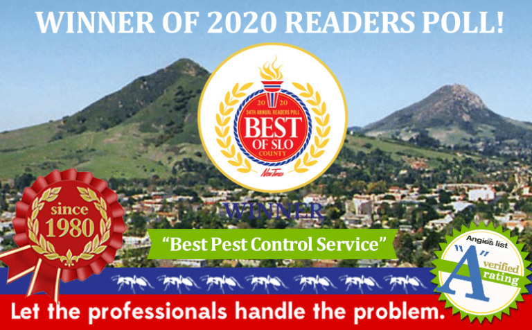 """Brezden Pest Wins 1st Place """"Best Of SLO County 2020"""""""
