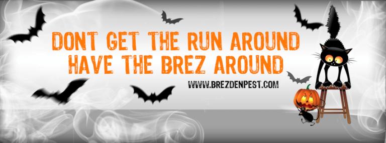 Happy Halloween From Brezden Pest Control