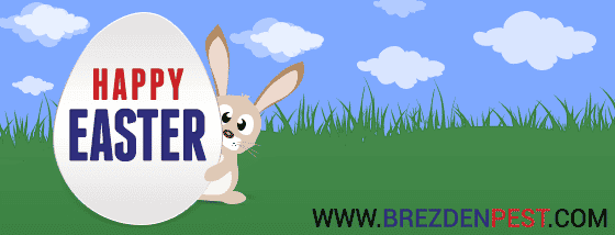 Don't Let The Easter Bunny Leave Ants In Your Home!