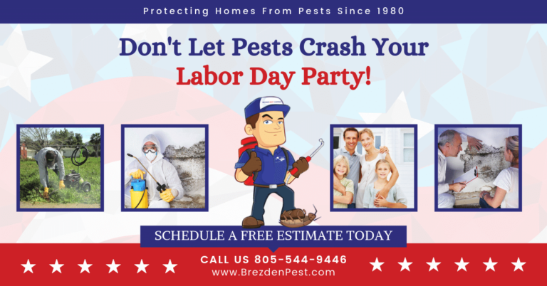 Happy Labor Day Weekend From Your Local Pest Control Company