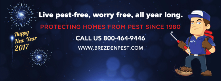 Happy New Year From Brezden Pest Control