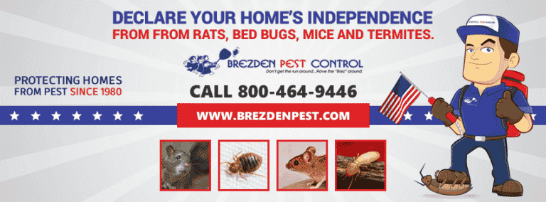 Don't Let Pests Spoil Your 4th Of July Celebration.