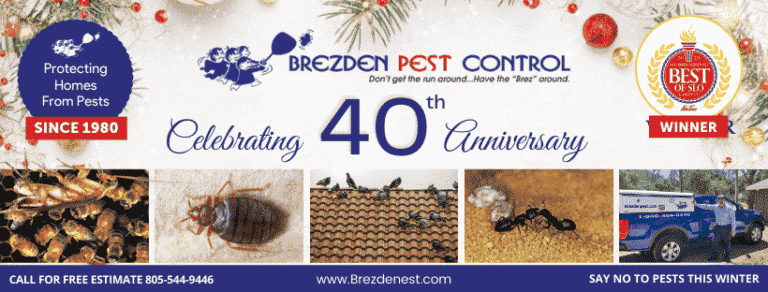 Our 40th Year In Pest Control – End Of Year Look Back