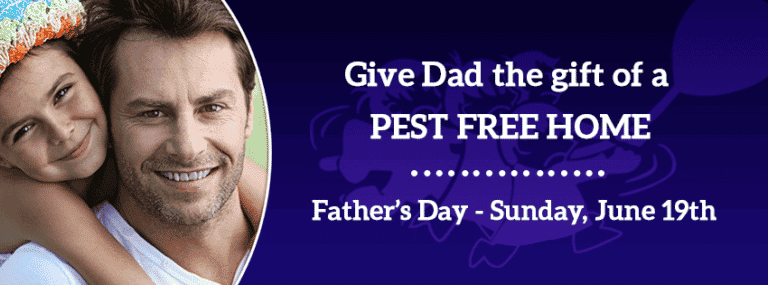 The Perfect Gift For DAD?