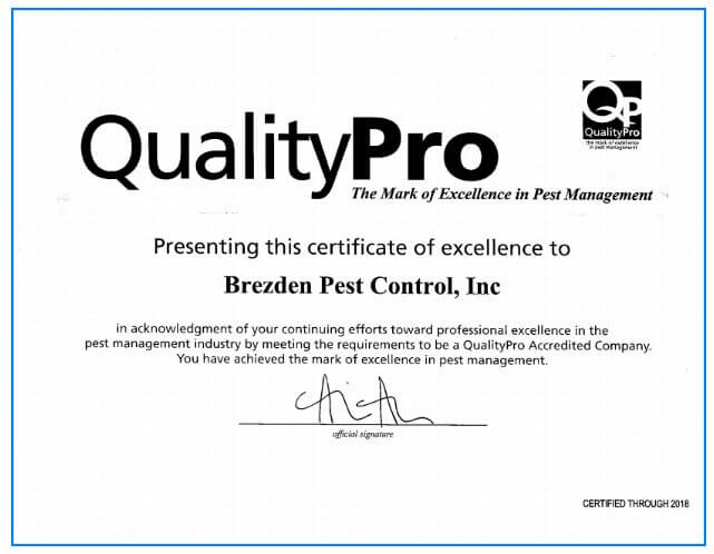 Brezden Pest Control Has Always Been Quality But Now We're Accredited